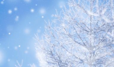 冬の特徴(浜名湖競艇場の予想のコツ)
