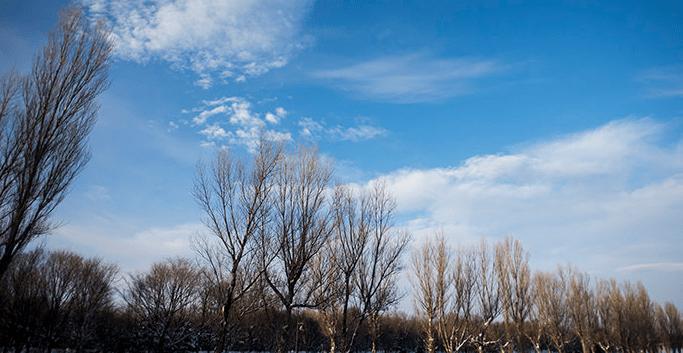 冬の特徴(津競艇場の予想のコツ)
